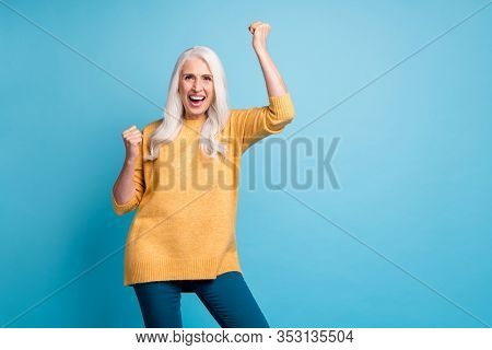 Portrait Of Her She Nice Attractive Lovely Pretty Cheerful Cheery Ecstatic Lucky Grey-haired Woman C