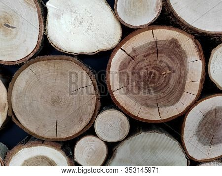 Tree Cut Background, Decoration Of Cutting Tree. Cutting Tree Trunks Placed Together For Interior De