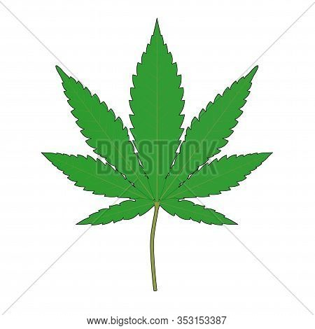 Medical Marijuana Or Cannabis Hemp Leaf In Sketch And Toon Style On A White Background. 3d Rendering