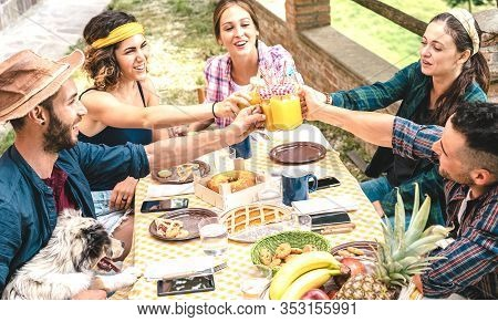 Happy Friends Toasting Healthy Fruit Juice At Countryside Picnic - Young Family Concept With Alterna