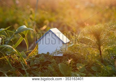 Eco-friendly Home Among Leaves And Greenery Of Nature. Model Of Eco House With Blank Copy Space, Rea