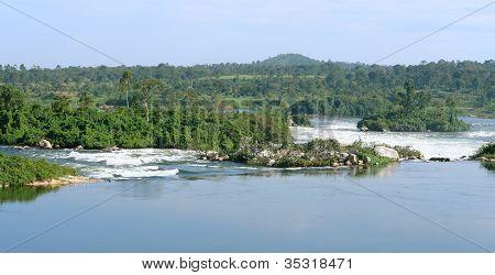Waterside River Nile Scenery Near Jinja In Uganda
