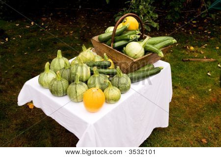 Table Of Various Squash