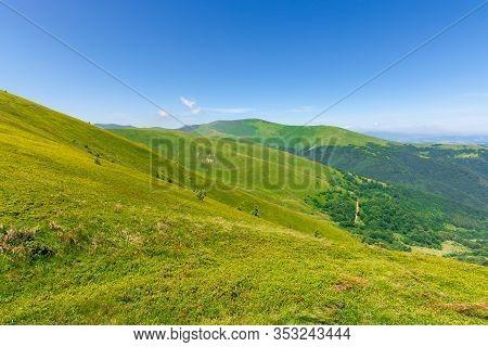 Green Rolling Hills Of Mountain Ridge Borzhava. Grassy Alpine Meadows Beneath A Blue Sky With Some C
