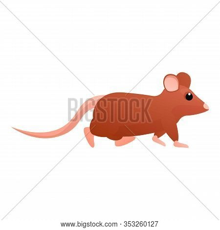Walking Rat Icon. Cartoon Of Walking Rat Vector Icon For Web Design Isolated On White Background