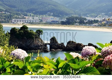 Hydrangeas In Os Castelos Rocks On The Beach Of Seiramar, Between Covas A Sacido, In Viveiro, Lugo,