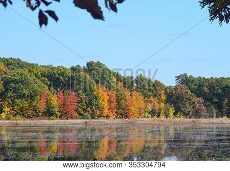 Beautiful View Of Autumn Trees By The Lake In Waterloo Park, Ann Arbor, Michigan, Usa. Reflection Of