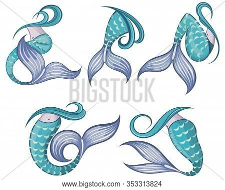 Mermaid Tails Vector Graphic Illustration. Mermaid Tails