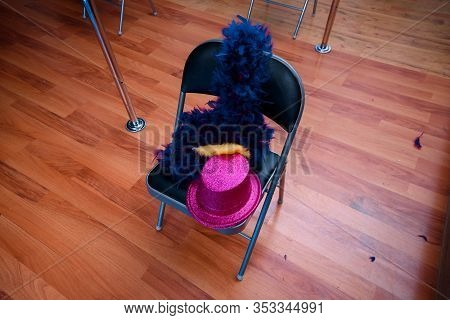 Hat And Feathers Lying On A Chair. Inventory For Striptease.