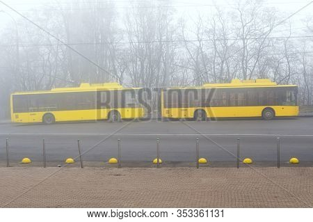 Yellow Buses In The Fog. Yellow School Buses In A Foggy Haze. Blurry