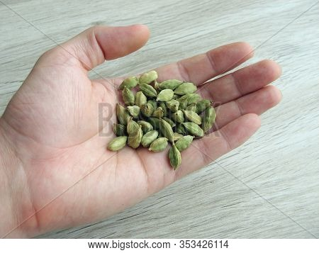 Close Up Of Green Cardamon Seeds On Male Hand With Wooden Background.