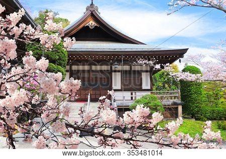Ancient pavilions and flowering sakura in Hokokuji temple, Kamakura, Japan
