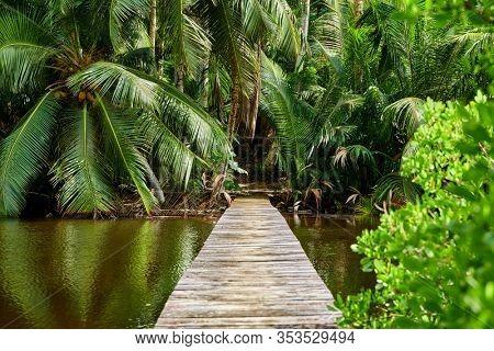 Beautiful lake at Seychelles, Mahe
