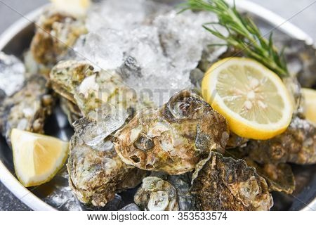 Oyster Shell With Herb Spices Lemon Rosemary Served Table And Ice Healthy Sea Food Raw Oyster Dinner