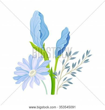 Floral Composition With Iris Flower On Green Erect Stem Vector Illustration