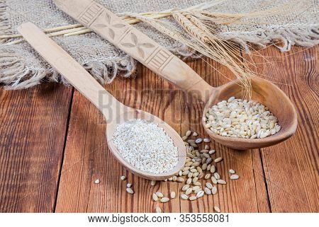 Raw Crushed Barley Groats And Pearl Barley In Two Wooden Spoons, Barley Ears On The Rustic Table