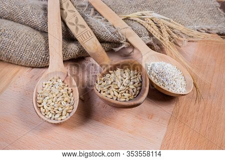 Raw Crushed Barley Groats, Pearl Barley And Whole Barley Grains In Different Wooden Spoons, Ears On