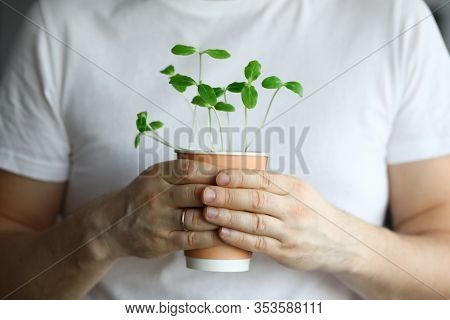 Closeup Man Holds Glass With Sprouted Small Herbs. Healthy Lifestyle. New Way Cooking. Enrich Menu W