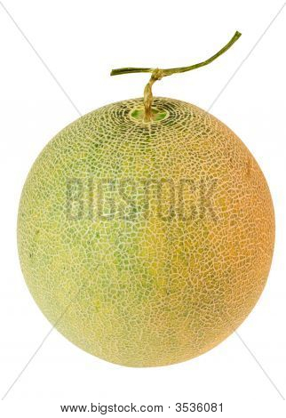 Whole musk melon isolated on white background poster