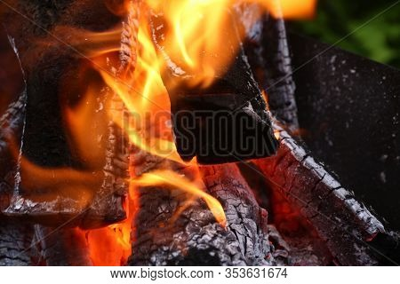 Flame Bright Fire Valuable And Irrevocable Wood. Cooking On Real Fire. Wood Heating. Bonfire Close-u