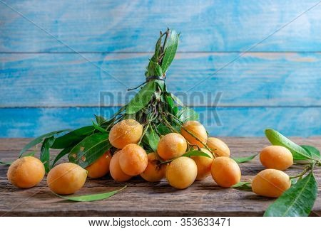 Plum Mangos Cut From The Tree With Stems And Leaves. Thai Gandaria Fruit (mayongchid Maprang Marian