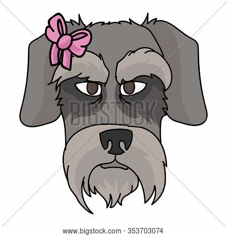 Cute Cartoon Schnauzer Dog Face With Pink Bow Vector Clipart. Pedigree Kennel Doggie Breed. Purebred