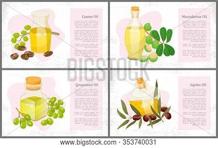 Set Of Pictures Of Organic Products And Information About It. Glass Vessels With Liquid, Castor And