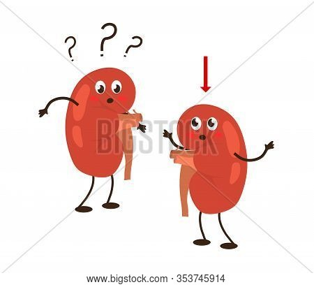 Sick Human Kidneys On A White Background. Renal Nephroptosis. Vector Illustration.