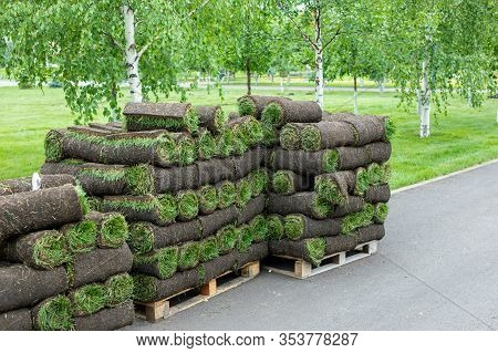 Stacks Of Sod Rolls For Landscaping. Lawn Grass In Rolls On Pallets On Street. Rolled Grass Lawn Is