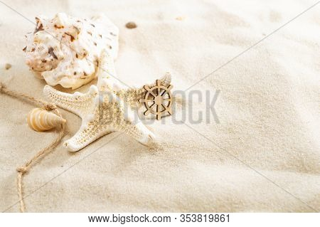 Seashells On The Sand With Copy Space. Summer Beach Holiday Concept.