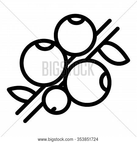 Superfood Berry Icon. Outline Superfood Berry Vector Icon For Web Design Isolated On White Backgroun