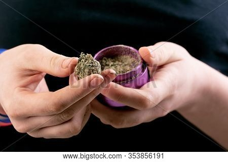Person Holding Dried Cannabis Flower Or Bud