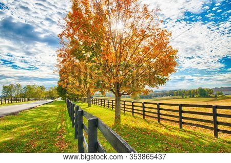 Beautiful Autumn Country Landscape With Road, Colorful Tree And Pastures Of Horse Farm.