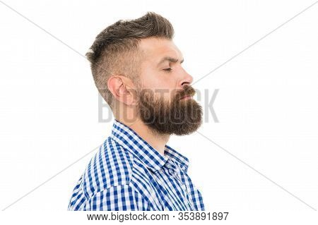 Charismatic Male Looking Serious. Mustache From Barber. Mature Hipster With Beard. Trendsetter Hipst