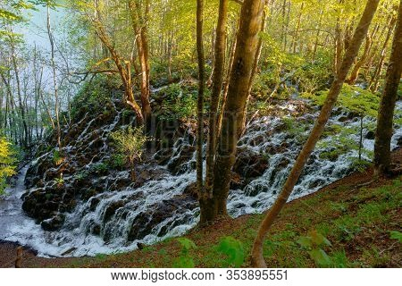 Plitvicka Lakes Croatian National Park - Beautiful Nature With Water Flowing Down The Mossy Rocks Th