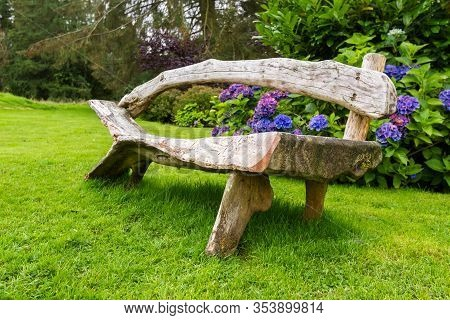 Beautiful Rustic Wooden Bench In A Beautiful Garden With Gorgeous Hydrangea Blooms In The Background