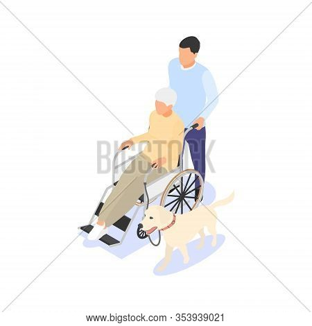 A Young Man Helps An Elderly Woman To Travel In A Wheelchair With A Dog. Volunteering Concept, Socia