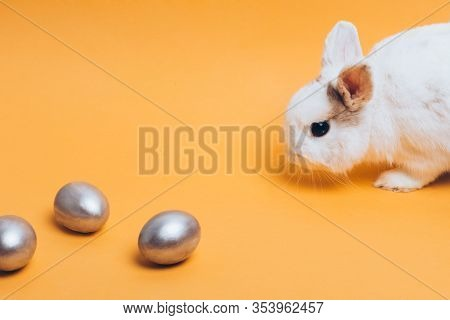 White Rabbit With Silver Easter Egg On A Yellow Background, Decoration, Holiday Background Concept.