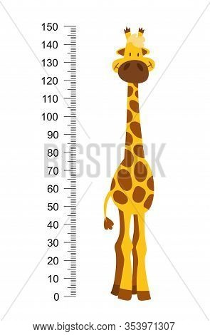 Cheerful Funny Giraffe With Long Neck. Height Meter Or Meter Wall Or Wall Sticker From 0 To 150 Cent