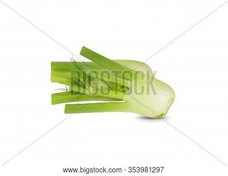 Fresh Green Fennel On A White Background