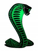 Funky Snake Illustration Design on White Background poster