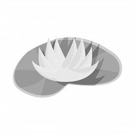 Vector Illustration Of Flower And Lotus Logo. Set Of Flower And Leaf Stock Symbol For Web.