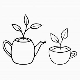 Young Sprouts With  Leaves In A Tea Cup And A Teapot Set. The Concept Of The  Spring, The Birth Of A
