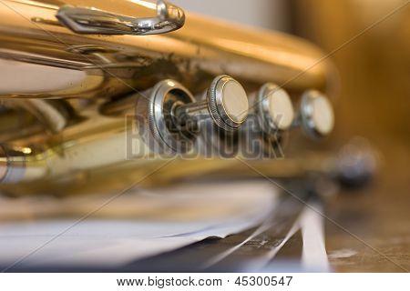 Trumpet Pistons