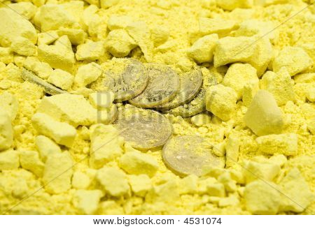 Coins In Yellow