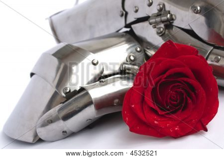 Rose And Armor
