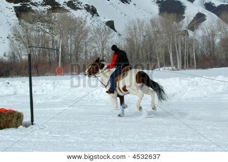 Ski Joring Rider