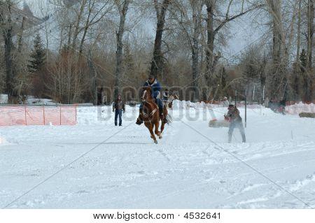 Ski Joring Rider And Skier 2
