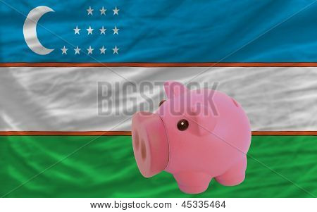 Piggy Rich Bank And  National Flag Of Uzbekistan