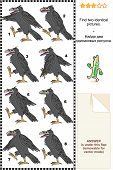 Visual puzzle: Find two identical pictures of marching ravens. Answer included. poster